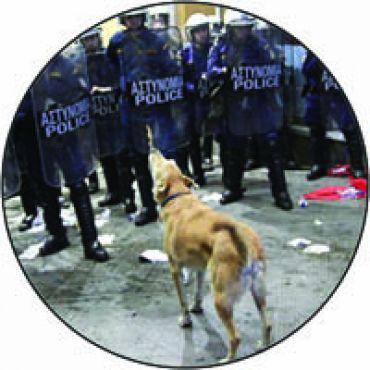 Riot Dog 2