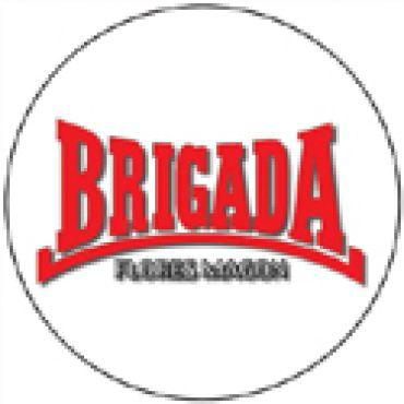 Brigada Flores Magon 1