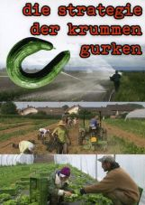 Die Strategie der krummen Gurken (DVD)
