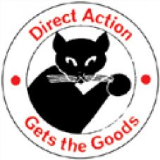 Direct action 3
