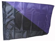 Fahne Schwarz - violett