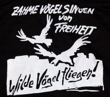 Zahme Vögel (Kapuzi)